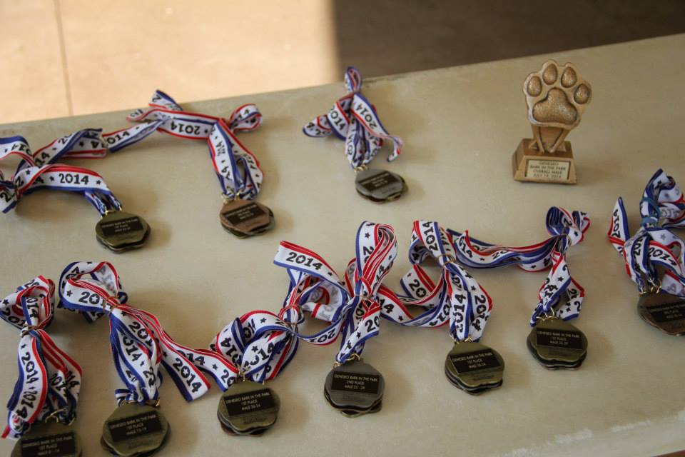 winner medals and trophies